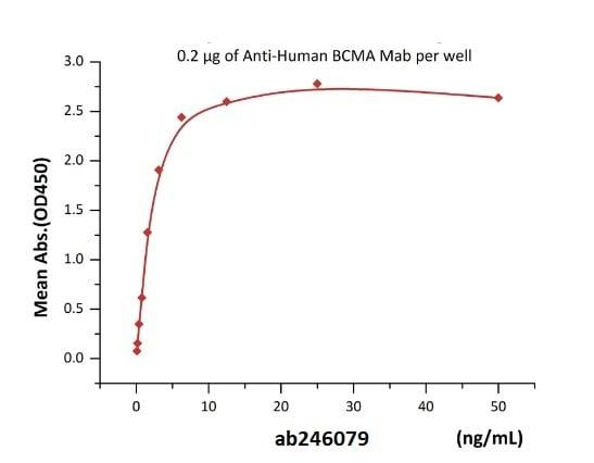 Functional Studies - Recombinant human BCMA protein (Fc Chimera Active) (Biotin) (ab246079)