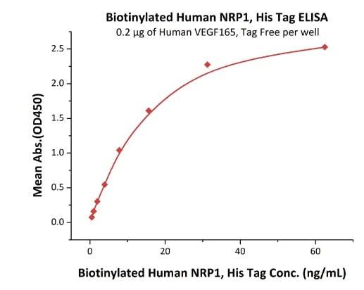 Functional Studies -  Human Neuropilin 1 protein (ab246144)