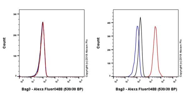 Flow Cytometry - Anti-Bag3 antibody [EPR20207-58-4] (ab246225)