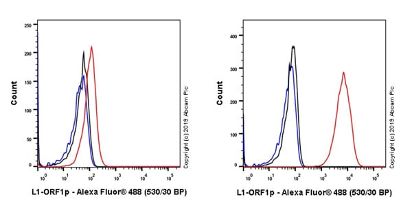 Flow Cytometry - Anti-LINE-1 ORF1p antibody [EPR22227-6] - BSA and Azide free (ab246317)