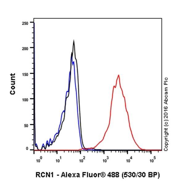 Flow Cytometry - Anti-RCN1/RCN antibody [EPR17163] - BSA and Azide free (ab246331)
