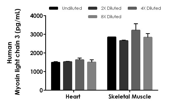 Interpolated concentrations of native Myosin Light Chain 3 in human heart and skeletal muscle extract samples based on a 72 µg/mL and 20 µg/mL extract load respectively.