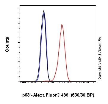Flow Cytometry - Anti-p63 antibody [EPR5701] (Alexa Fluor® 488) (ab246727)