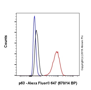 Flow Cytometry - Alexa Fluor® 647 Anti-p63 antibody [EPR5701] (ab246728)
