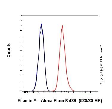 Flow Cytometry - Alexa Fluor® 488 Anti-Filamin A antibody [EP2405Y] (ab246749)
