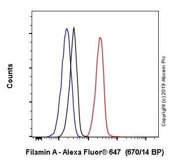 Flow Cytometry - Alexa Fluor® 647 Anti-Filamin A antibody [EP2405Y] (ab246750)
