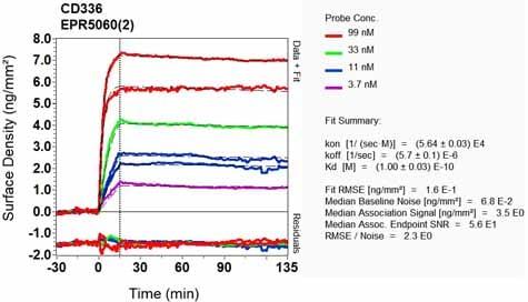 OI-RD Scanning - Anti-NK-p44 antibody [EPR5060(2)] - Low endotoxin, Azide free (ab246801)