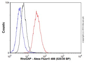 Flow Cytometry - Anti-RhoGAP antibody [EP489Y] - BSA and Azide free (ab247243)