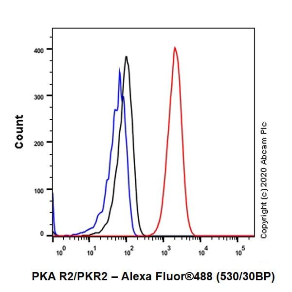 Flow Cytometry (Intracellular) - Anti-PKA R2/PKR2 antibody [Y116] - BSA and Azide free (ab247265)