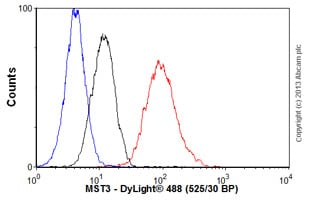 Flow Cytometry - Anti-MST3 antibody [EP1468Y] - BSA and Azide free (ab247312)