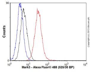 Flow Cytometry - Anti-Mark3 antibody [EPR633Y] - BSA and Azide free (ab247326)