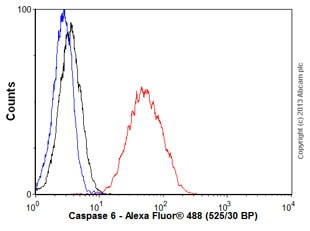 Flow Cytometry - Anti-Caspase-6/CASP-6 antibody [EP1325Y] - BSA and Azide free (ab247343)