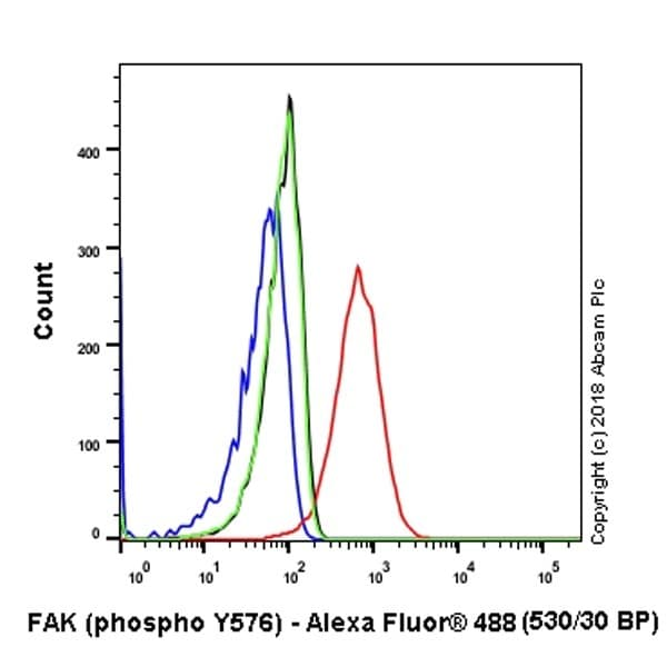 Flow Cytometry - Anti-FAK (phospho Y576) antibody [EP1897Y] - BSA and Azide free (ab247442)