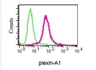 Flow Cytometry (Intracellular) - Anti-Plexin A1 antibody [EPR3449] - BSA and Azide free (ab247548)