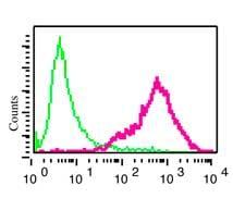 Flow Cytometry - Anti-RGS9 antibody [EPR2873] - BSA and Azide free (ab247728)