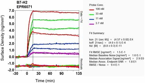 Other - Anti-ICOS Ligand/ICOSL antibody [EPR6071] - BSA and Azide free (ab248080)