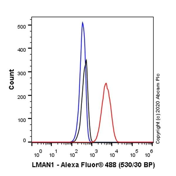 Flow Cytometry (Intracellular) - Anti-LMAN1 antibody [EPR6979] - BSA and Azide free (ab248096)