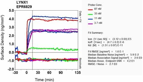 Other - Anti-LYNX1 antibody [EPR6829] - BSA and Azide free (ab248107)
