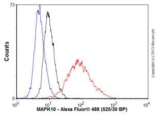 Flow Cytometry - Anti-JNK3 antibody [EPR5493(2)] - BSA and Azide free (ab248117)