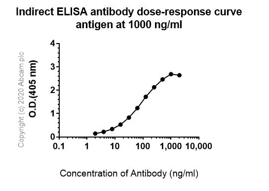 ELISA - Anti-JNK3 antibody [EPR5493(2)] - BSA and Azide free (ab248117)