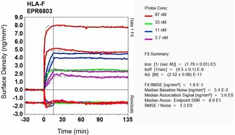 OI-RD Scanning - Anti-HLA F antibody [EPR6803] - BSA and Azide free (ab248133)