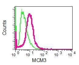 Flow Cytometry - Anti-MCM3 antibody [EPR7081] - BSA and Azide free (ab248148)