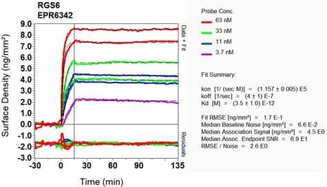 OI-RD Scanning - Anti-RGS6 antibody [EPR6342] - BSA and Azide free (ab248237)