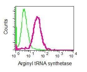 Flow Cytometry - Anti-RARS antibody [EPR6298] - BSA and Azide free (ab248245)
