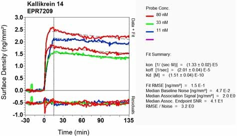 OI-RD Scanning - Anti-Kallikrein 14 antibody [EPR7209] - BSA and Azide free (ab248246)