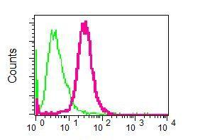 Flow Cytometry - Anti-Arp2 antibody [EPR7979] - BSA and Azide free (ab248263)