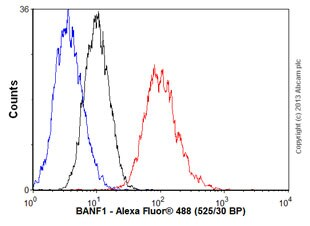 Flow Cytometry - Anti-BANF1/BAF antibody [EPR7669] - BSA and Azide free (ab248281)