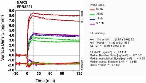 OI-RD Scanning - Anti-NARS antibody [EPR8221] - BSA and Azide free (ab248320)