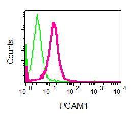 Flow Cytometry - Anti-PGAM1 antibody [EPR8042] - BSA and Azide free (ab248342)