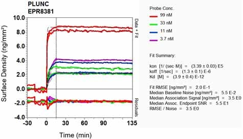 OI-RD Scanning - Anti-Plunc antibody [EPR8381] - BSA and Azide free (ab248364)