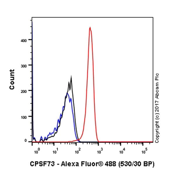Flow Cytometry (Intracellular) - Anti-CPSF73 antibody [EPR7468] - BSA and Azide free (ab248388)