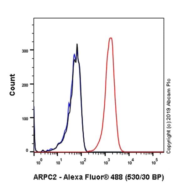 Flow Cytometry - Anti-ARPC2 antibody [EPR8533] - BSA and Azide free (ab248468)