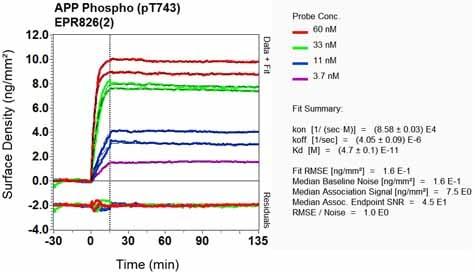 OI-RD Scanning - Anti-Amyloid Precursor Protein (phospho T743) antibody [EPR826(2)] - BSA and Azide free (ab248499)