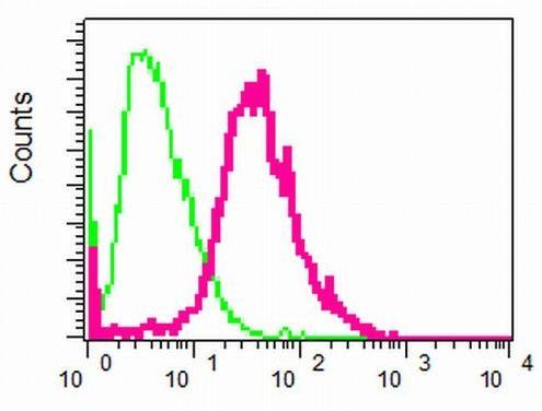 Flow Cytometry - Anti-Activin A Receptor Type IB/ALK-4 antibody [EPR4816] - BSA and Azide free (ab248514)
