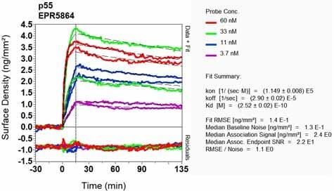 OI-RD Scanning - Anti-MPP1 antibody [EPR5864] - BSA and Azide free (ab248525)