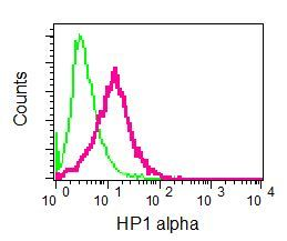 Flow Cytometry - Anti-HP1 alpha antibody [EPR5776] - BSA and Azide free (ab248560)
