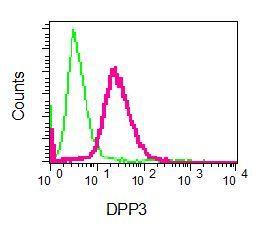 Flow Cytometry - Anti-DPP3 antibody [EPR9020(B)] - BSA and Azide free (ab248606)