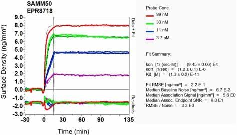 OI-RD Scanning - Anti-SAMM50/SAM50 antibody [EPR8718] - BSA and Azide free (ab248626)