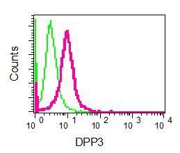 Flow Cytometry - Anti-DPP3 antibody [EPR9021(B)] - BSA and Azide free (ab248633)