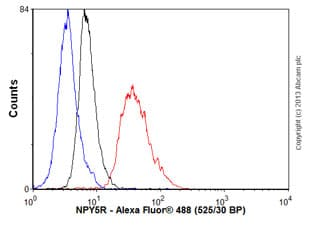 Flow Cytometry - Anti-NPY5R antibody [EPR8382] - BSA and Azide free (ab248642)