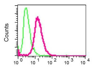 Flow Cytometry - Anti-TROY antibody [EPR3214(2)] - BSA and Azide free (ab248805)