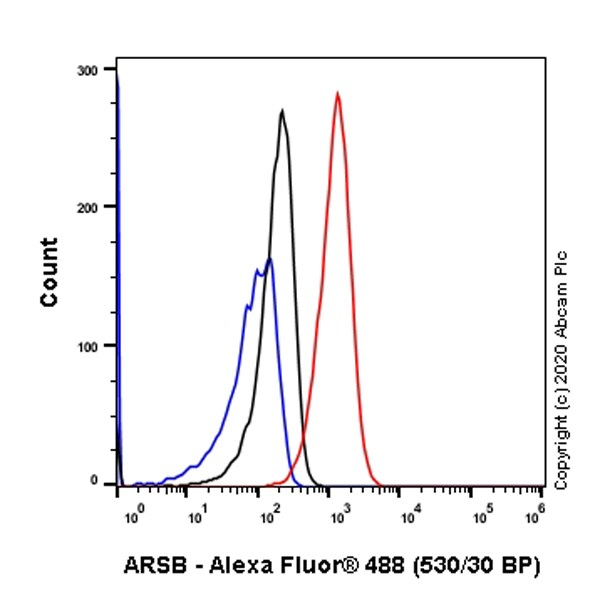 Flow Cytometry (Intracellular) - Anti-ARSB antibody [EPR9409] - BSA and Azide free (ab248950)