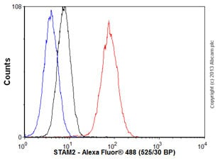 Flow Cytometry - Anti-STAM2 antibody [EPR8688] - BSA and Azide free (ab248995)
