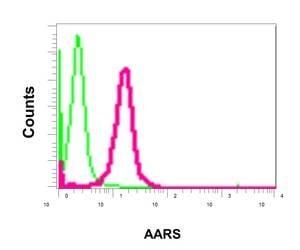 Flow Cytometry (Intracellular) - Anti-AlaRS antibody [EPR11037(B)] - BSA and Azide free (ab249194)