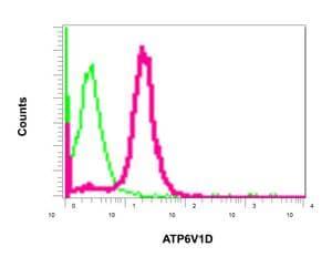 Flow Cytometry (Intracellular) - Anti-ATP6V1D antibody [EPR11326(B)] - BSA and Azide free (ab249327)