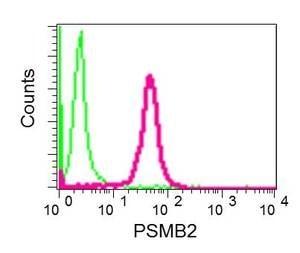 Flow Cytometry - Anti-Proteasome subunit beta type 2/PSMB2 antibody [EPR8826(2)(B)] - BSA and Azide free (ab249366)
